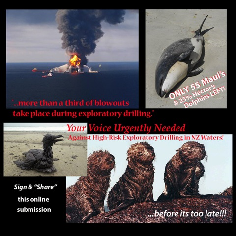 Your Voice Urgently Needed Against High Risk Exploratory Drilling in NZ Waters!
