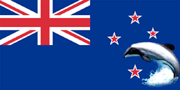 Maui Dolphin the national symbol of New Zealand