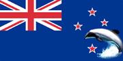 Maui Dolphin the national symbol of New Zealand