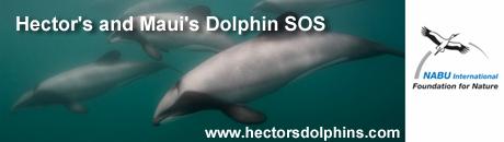 hectorsdolphins.com